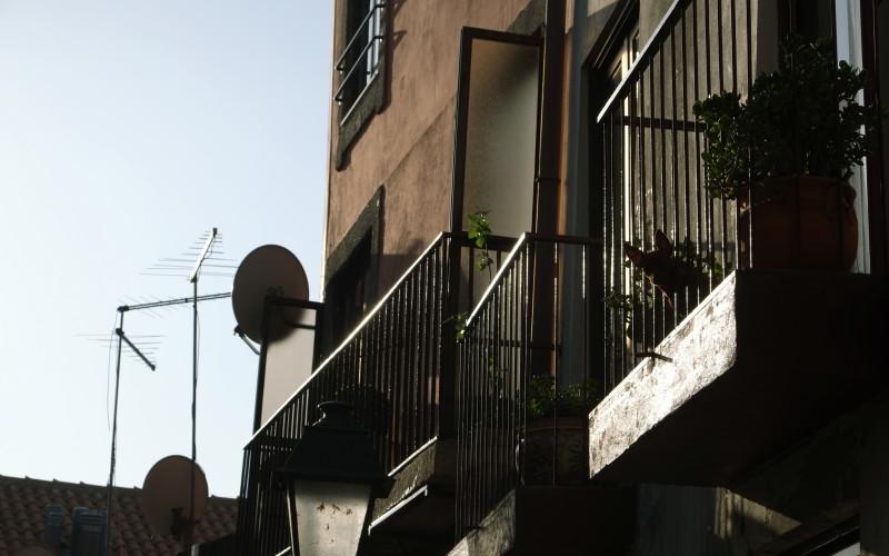 Porto Tipps – Hund am Fenster 3